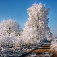 Sneeuw foto tips